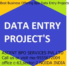 bpo-projects-offline-data-entry-work-250x250